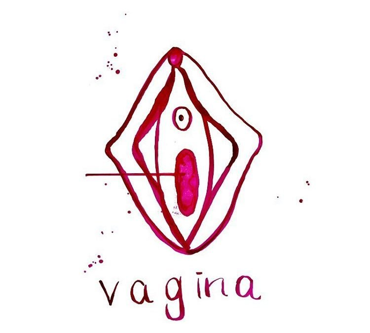 Care for your Vulva – Love your Vulva – Viva La Vulva – just don't clean it!?